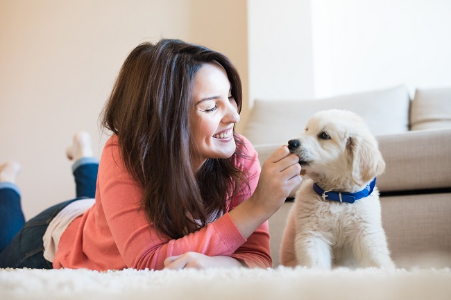 5 HVAC Tips for Pet Owners